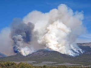 Wildfire smoke can harm health.
